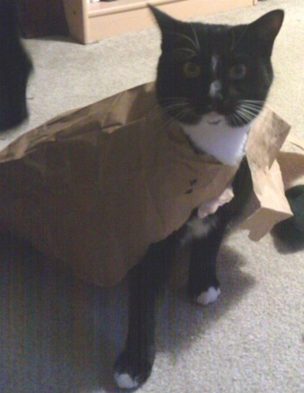 (Pictured here in a cape she made for herself out of a brown paper bag)