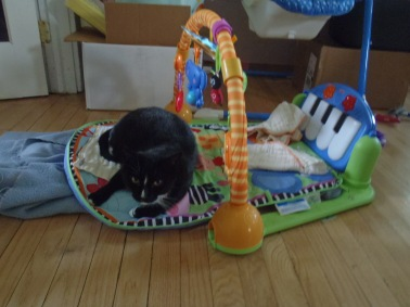 Laying on the activity mat (I had a feeling she might like it so I put down burp cloths just in case...)